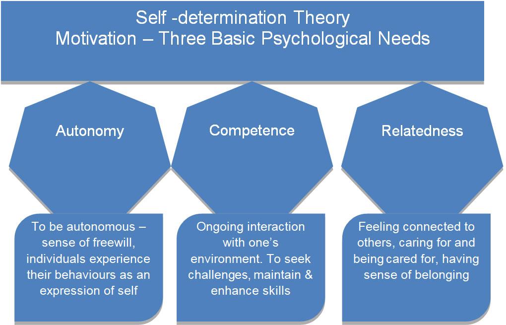 Self -determination Theory (source Deci and Ryan, 2002)